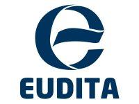 eudita_fair_value_auditores2